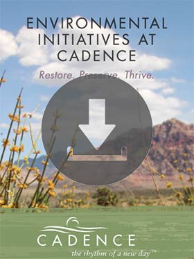 Download the Cadence Environmental Brochure